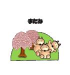 桜-三匹の犬たち(個別スタンプ:40)