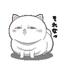 ネコのましゅまろ 白ver.(個別スタンプ:09)