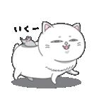 ネコのましゅまろ2 白ver.(個別スタンプ:13)