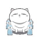 ネコのましゅまろ2 白ver.(個別スタンプ:40)