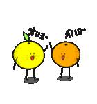 柑橘家族(ファミリー)1(個別スタンプ:31)