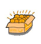 柑橘家族(ファミリー)1(個別スタンプ:40)