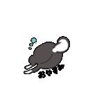可愛い黒柴(個別スタンプ:07)
