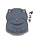 ネコのましゅまろ 黒ver.(個別スタンプ:01)