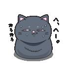 ネコのましゅまろ 黒ver.(個別スタンプ:37)