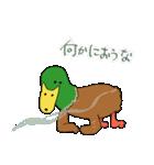 犬カモしれないスタンプ(個別スタンプ:07)