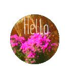 EUROPE flower♡(個別スタンプ:02)