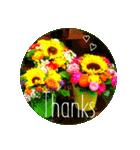 EUROPE flower♡(個別スタンプ:05)