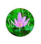 EUROPE flower♡(個別スタンプ:07)