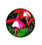 EUROPE flower♡(個別スタンプ:10)