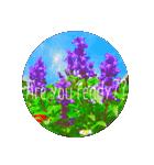 EUROPE flower♡(個別スタンプ:16)