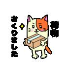 ネコな暮らし(個別スタンプ:11)