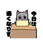 ネコな暮らし(個別スタンプ:31)