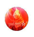 America grand circle♡♡(個別スタンプ:05)
