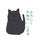 もっちり黒猫の可愛くて使いやすいスタンプ(個別スタンプ:03)