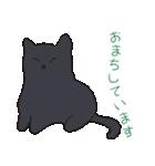 もっちり黒猫の可愛くて使いやすいスタンプ(個別スタンプ:10)