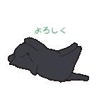 もっちり黒猫の可愛くて使いやすいスタンプ(個別スタンプ:14)