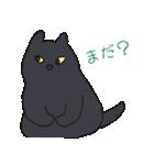 もっちり黒猫の可愛くて使いやすいスタンプ(個別スタンプ:15)