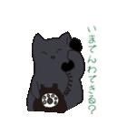 もっちり黒猫の可愛くて使いやすいスタンプ(個別スタンプ:19)