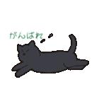 もっちり黒猫の可愛くて使いやすいスタンプ(個別スタンプ:25)