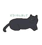 もっちり黒猫の可愛くて使いやすいスタンプ(個別スタンプ:35)