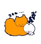 しっぽの短いねこ、しろくん(うさぎねこ)(個別スタンプ:03)