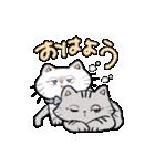 しろネコとサバトラのスタンプ(個別スタンプ:02)