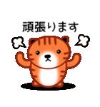 ひまねこにゃんず【茶トラ】(個別スタンプ:18)