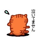 ひまねこにゃんず【茶トラ】(個別スタンプ:24)