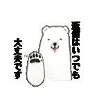 白井熊之丞 BASIC stamp(個別スタンプ:37)