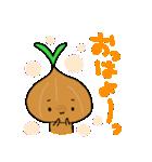 たまねぎさんとカブちゃん(個別スタンプ:01)