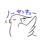 オカメインコとバードたち(個別スタンプ:09)
