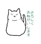 もっちり白猫の可愛い使いやすいスタンプ(個別スタンプ:03)