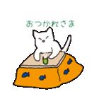 もっちり白猫の可愛い使いやすいスタンプ(個別スタンプ:05)