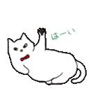 もっちり白猫の可愛い使いやすいスタンプ(個別スタンプ:11)