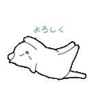 もっちり白猫の可愛い使いやすいスタンプ(個別スタンプ:14)