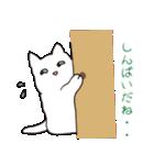 もっちり白猫の可愛い使いやすいスタンプ(個別スタンプ:20)