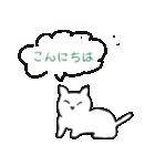 もっちり白猫の可愛い使いやすいスタンプ(個別スタンプ:24)