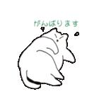 もっちり白猫の可愛い使いやすいスタンプ(個別スタンプ:32)