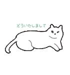 もっちり白猫の可愛い使いやすいスタンプ(個別スタンプ:35)