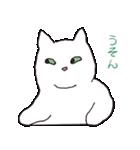 もっちり白猫の可愛い使いやすいスタンプ(個別スタンプ:40)