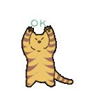 キジトラ猫の毎日使いやすいスタンプ(個別スタンプ:04)