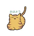 キジトラ猫の毎日使いやすいスタンプ(個別スタンプ:06)