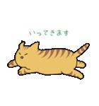 キジトラ猫の毎日使いやすいスタンプ(個別スタンプ:09)