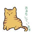 キジトラ猫の毎日使いやすいスタンプ(個別スタンプ:10)
