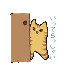 キジトラ猫の毎日使いやすいスタンプ(個別スタンプ:12)