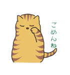 キジトラ猫の毎日使いやすいスタンプ(個別スタンプ:13)
