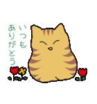 キジトラ猫の毎日使いやすいスタンプ(個別スタンプ:16)