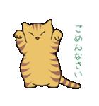 キジトラ猫の毎日使いやすいスタンプ(個別スタンプ:18)