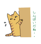 キジトラ猫の毎日使いやすいスタンプ(個別スタンプ:20)